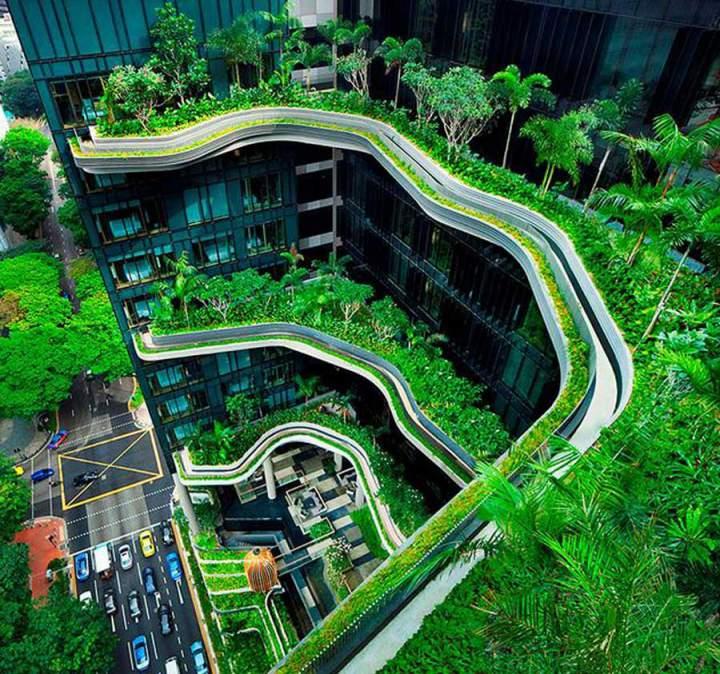 Diamond Lotus Green World project
