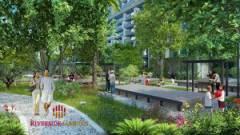 Riverside Garden project