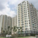 Residents Of Apartment Prosecute Flora Anh Dao's Investor