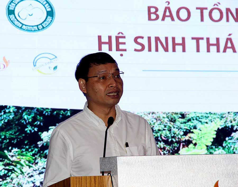 'Do not permit to build more building in Son Tra'