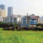 New Regulations On Collection Of Land Use Levy When Changing Land Use Purpose