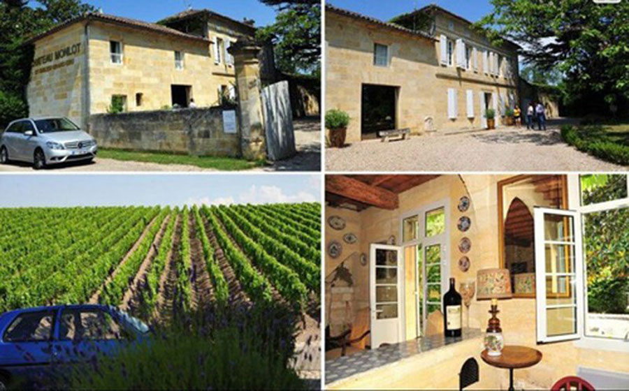 Vineyard is in the beautiful castle of Trieu Vy