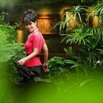 Hong Nhung Singer's Villa – Green Forest In The Heart Of The City