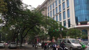 Hong Ha Center