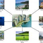 6 things you should know about Royal Paradise Vung Tau