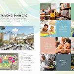 CFLD announced Swan Park project Dong Nai New City