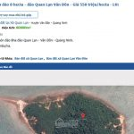 On sale 8ha island and hundreds of hectares of forest land in Van Don on the internet
