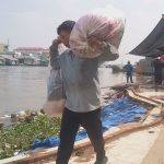 People in the Mekong Delta worry about brash