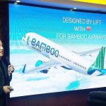 Prime Minister agreed to establish Bamboo Airways