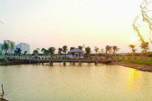 Regulatory Lake at Park Riverside Premium