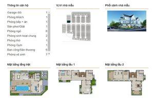 Single Detached Villa DL2