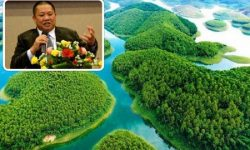 Stop implementing project of ecological resort Dam Van Hoi